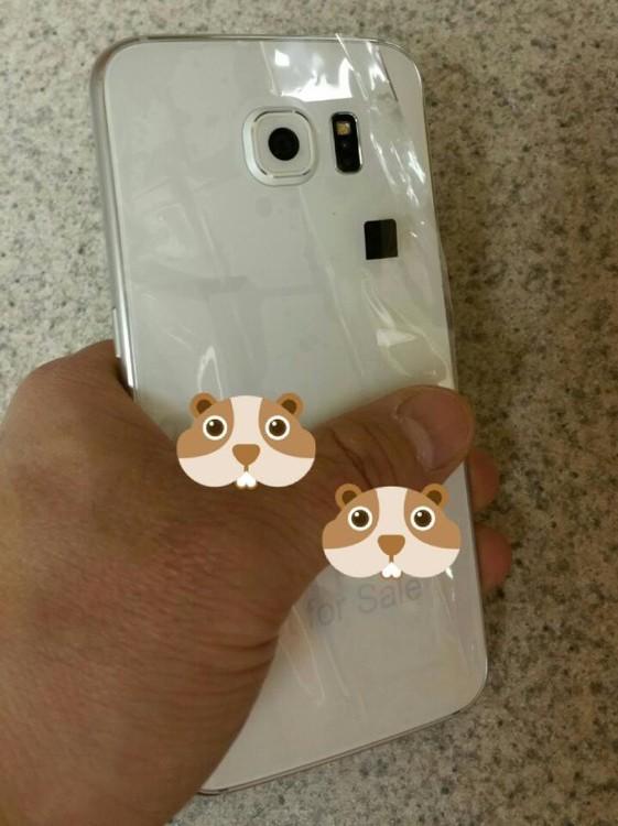 Samsung Galaxy S6 rear πισω καπακι