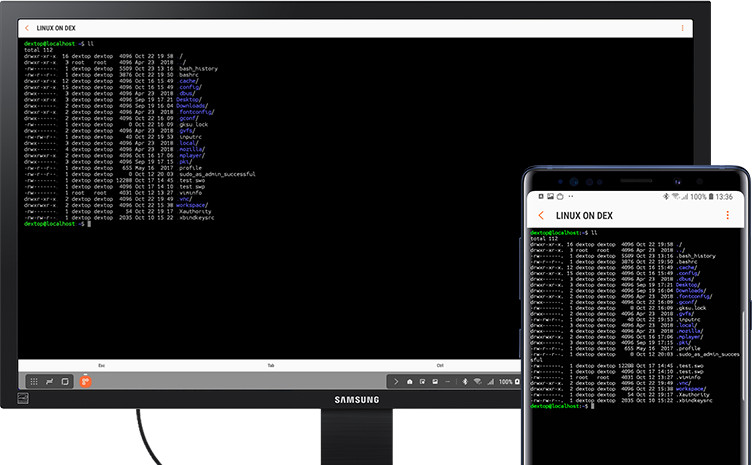 Linux on Dex Android 10 - 02